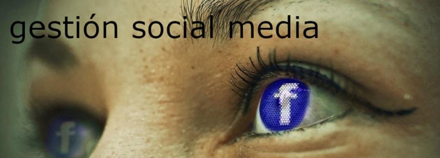 gestión social media